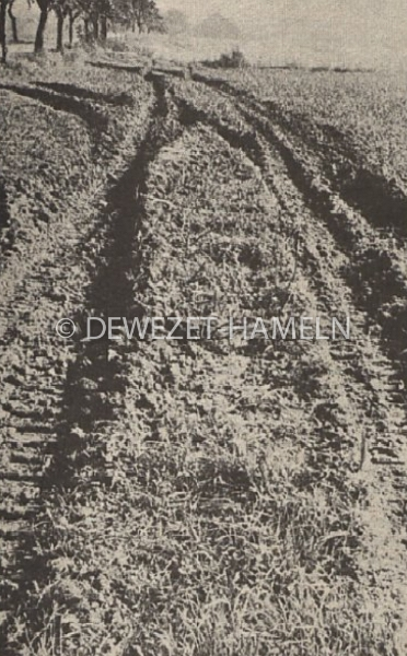 1971_10_05-dwz-forefront-6-006