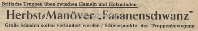 1960 Fasanenschwanz, Pheasant Tail