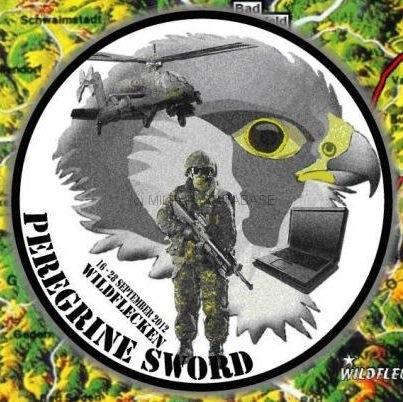1-peregrine-sword-2012-logo