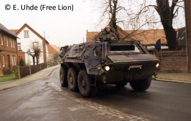 1997 Cherusker Schwert - Free Lion