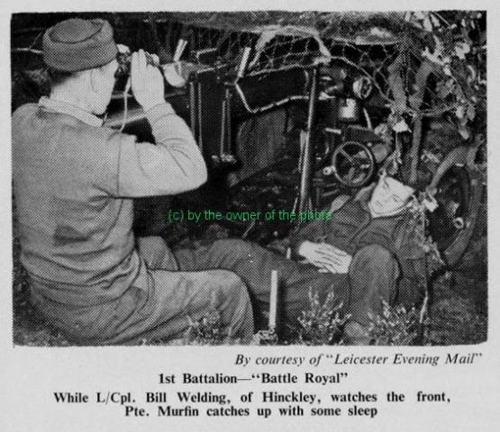 1954_battle_royal_green_tigers_0001