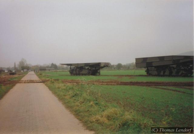 1993_queens-bull-thomas_0005-mildatabasec